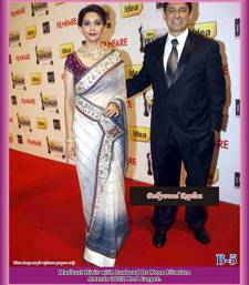 Buy Madhuri Dixit Bollywood Shaded White Net saree net-saree online