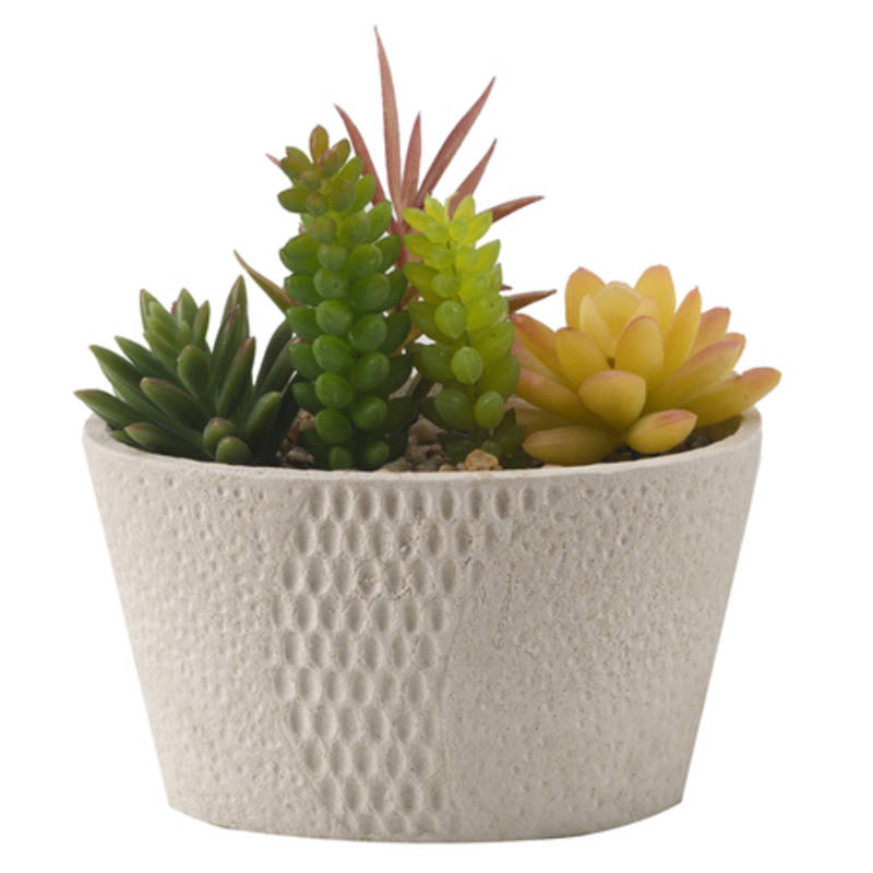 Buy green and yellow decorative plant with ceramic pot online for Flower pots with plants