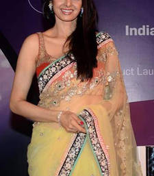 Buy Sridevi Bollywood replica light green net saree sridevi-saree online