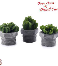 Buy Sweet little thorn plant shape decorative candles with stand (set of 3) candle online