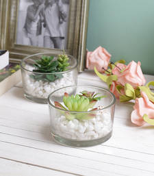 Buy Set of 2 Lovely & Pretty Small 6 CM High Artificial Plants artificial-flower online