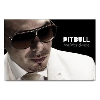 Pitbull In White Poster