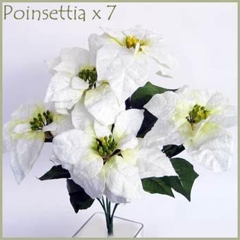 White Poinsettia Bunch -7 flowers bunch