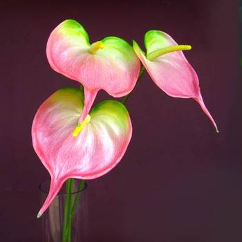 Anthuriums Natural Touch Lt. Pink (Artificial)