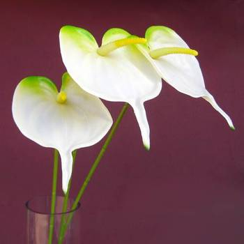 Anthuriums Natural Touch White (Artificial)