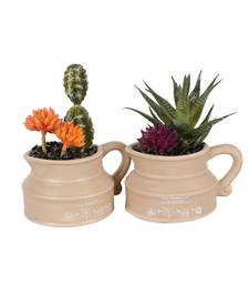 Buy Set of 2 Artificial Cactus Plant with Kettle Style Pot flower online